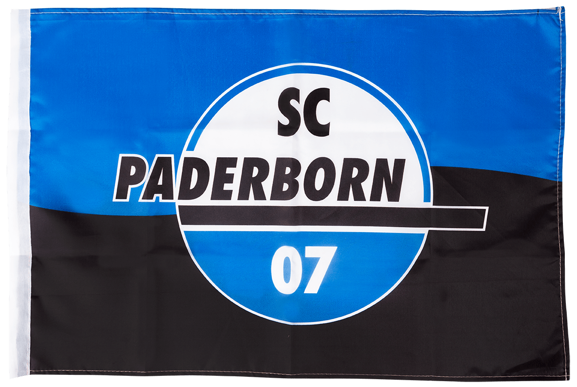 Schwenkfahne Logo 150x90 cm